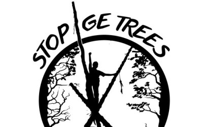 STOP GE Trees Action Camp Starts This Week