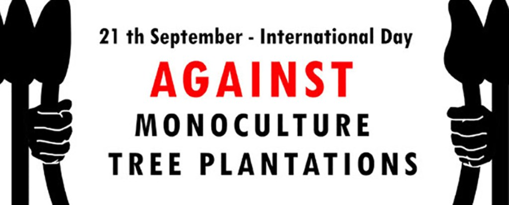 SIGN ON: Stop Monoculture Tree Plantations Expansion in Mozambique