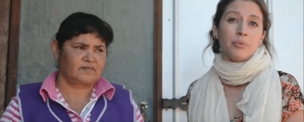 WATCH: Chilean Woman Describes How Family Has Been Impacted by Plantation Fires