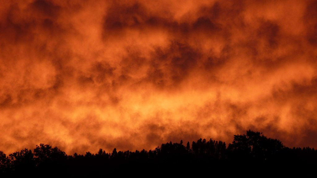 Wildfires and Water Shortages: Chile's Summer of Discontent