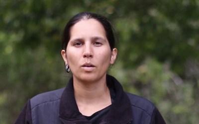 """Video: Ruddy Turnstone: """"Alert on the Impact of the Chilean Forest Model (Entrevista en destaque Ruddy Turnstone: Alto a los Árboles Transgénicos"""" Alerta Sobre el Impacto del Modelo Forestal Chileno)"""