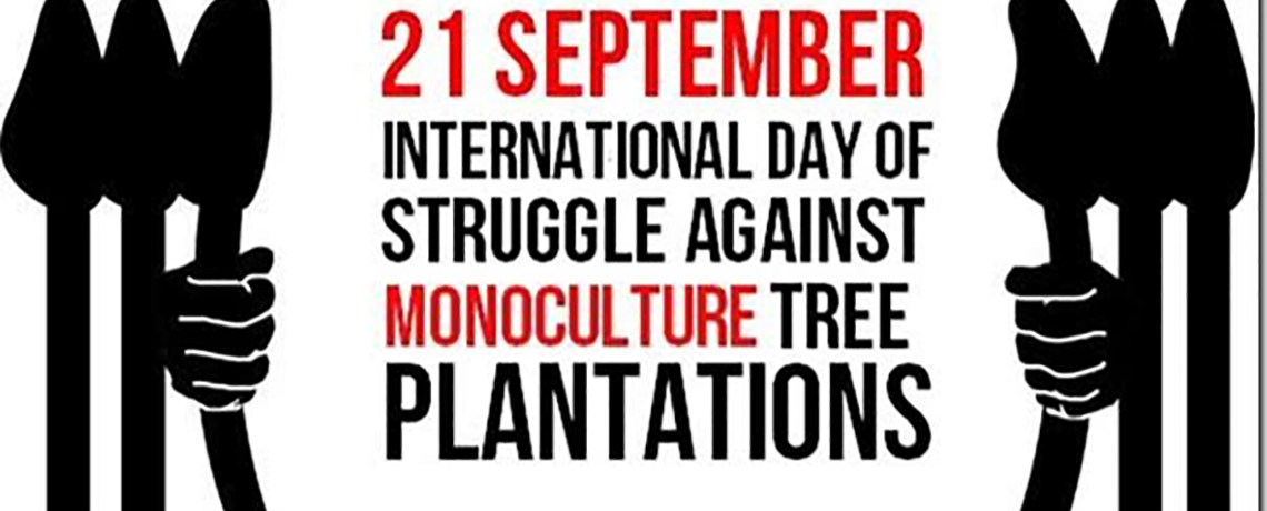 Sept. 21 is Int'l Day of Action against Tree Plantations: Videos, Photos & More