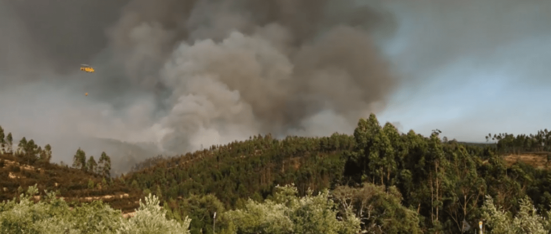 WATCH: Video Gives Stunning Look at Wildfires in Portugal