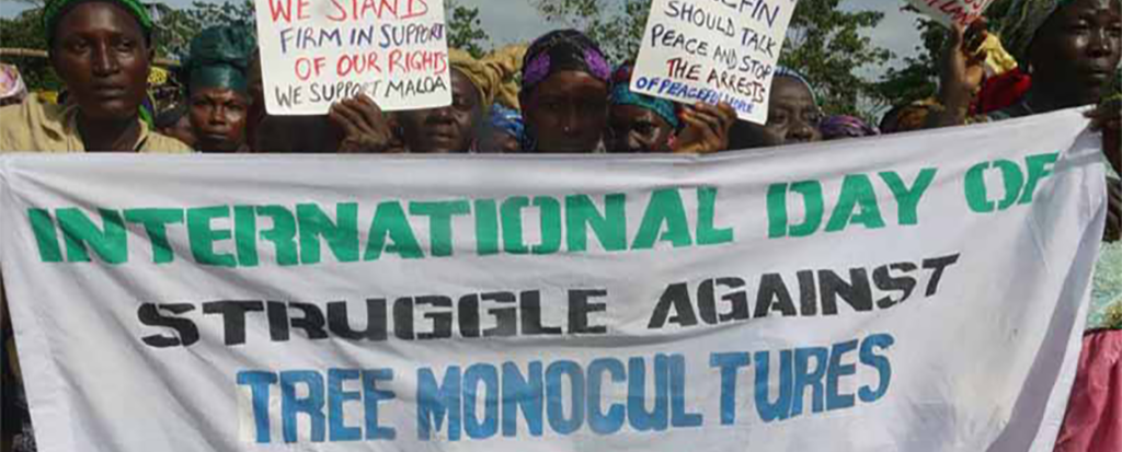 International Day of Struggle Against Monoculture Tree Plantations is Sept. 21