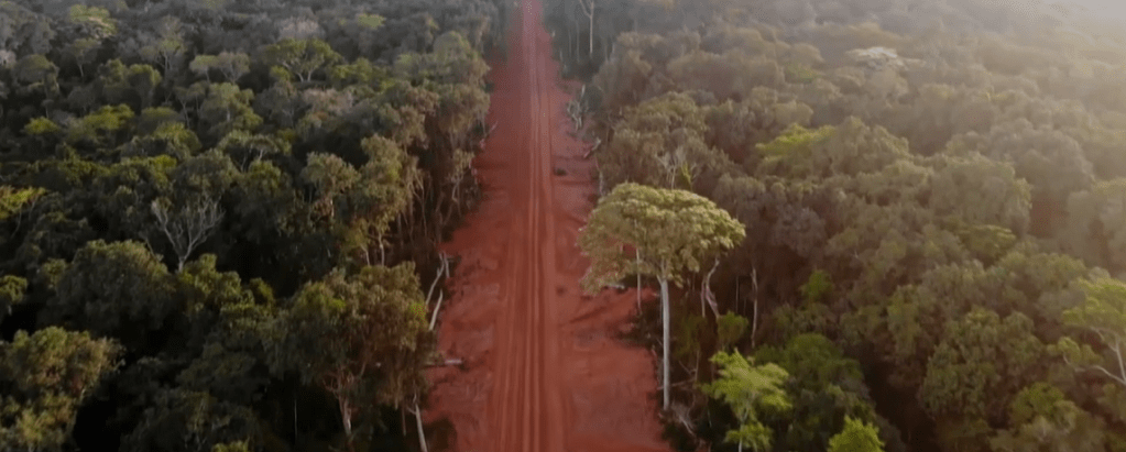 WATCH: 'Who is Protecting our Forests?' Doc Points Critical Eye at Forest Stewardship Council