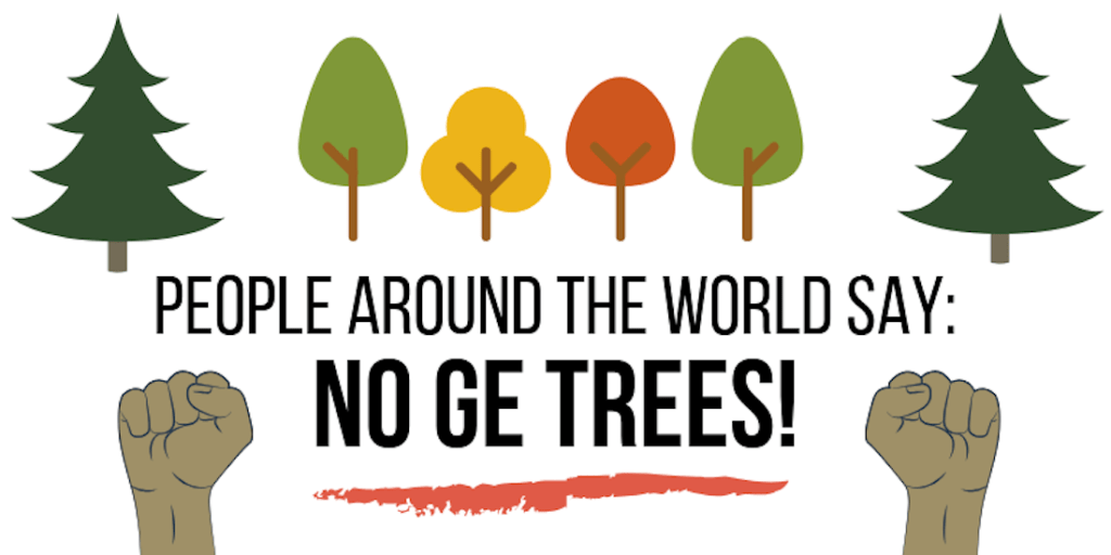 Global Campaign Highlights Worldwide Rejection of Genetically Engineered Trees  In Advance of International Tree Biotech Conference  in North Carolina