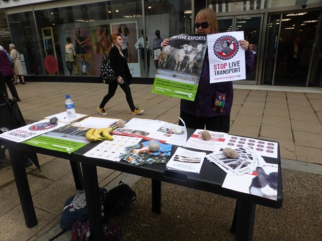 Stop Live Transport Day of Action UK