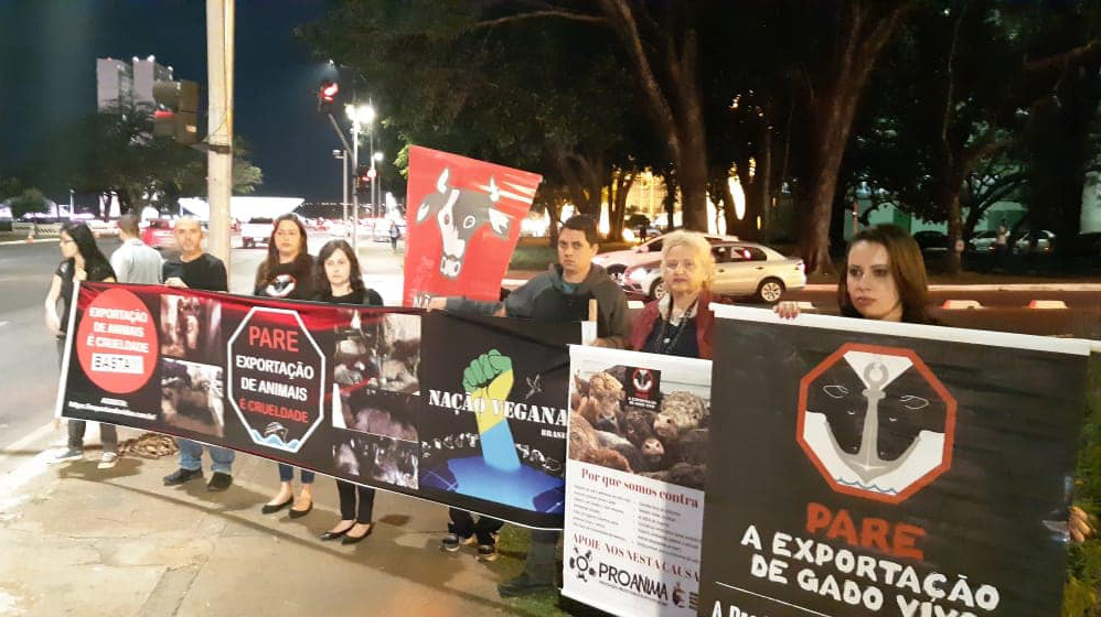 Stop Live Transport Day of Action Brazil