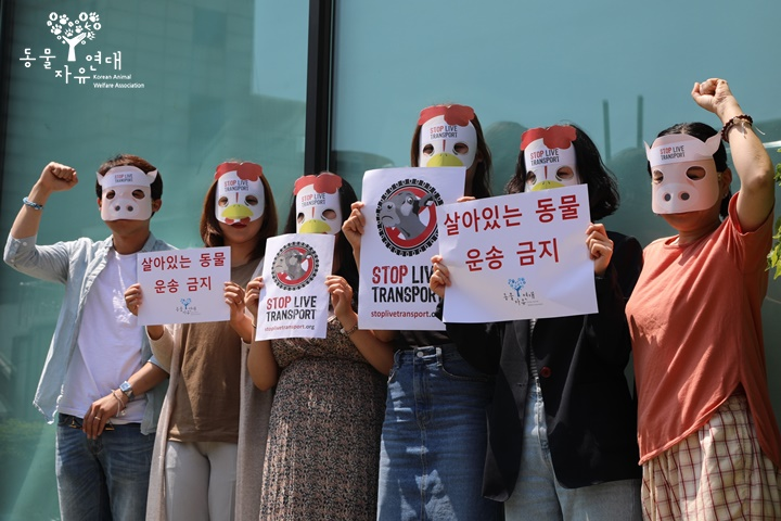Stop Live Transport Day of Action South Korea