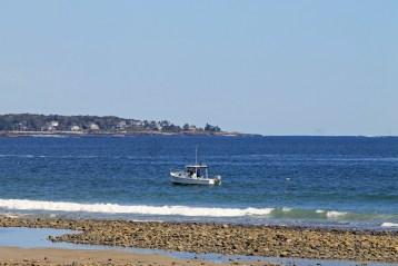Boat-Wells Estuarine Research Reserve