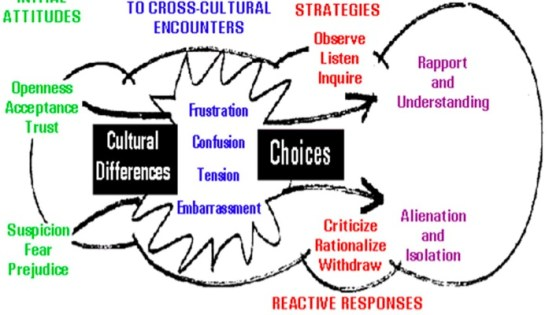culture shock cycle