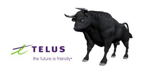 telus bull