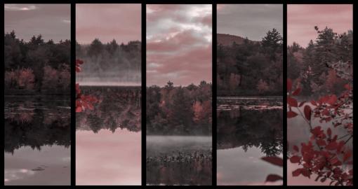 FALL MORNING VISUALS
