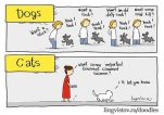 Dogs - Cats 05