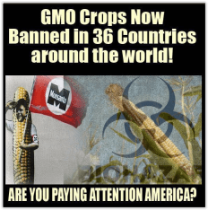 Message - GMOs