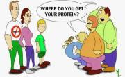 Vegan - protein where do you get