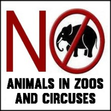 Zoo 18 Message - Zoos no