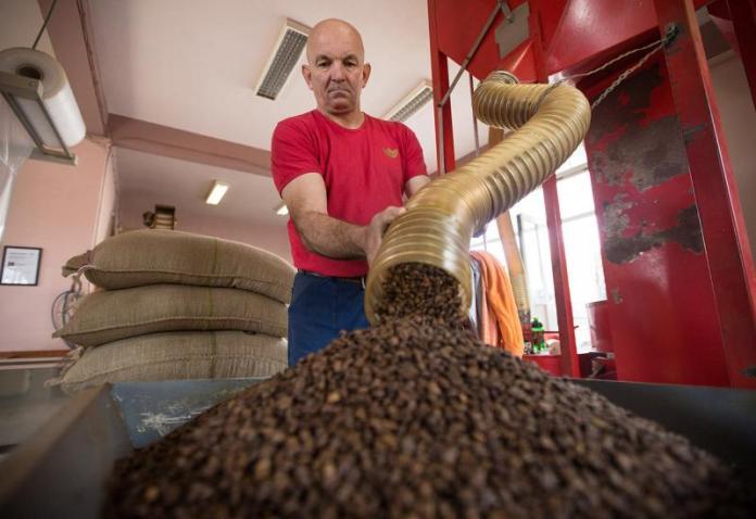 Treba proširiti tržište - Raste izvoz čapljinske kave