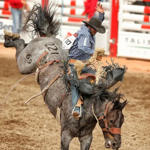 Wade Sundell Wins Saddle Bronc For Third Straight Day At