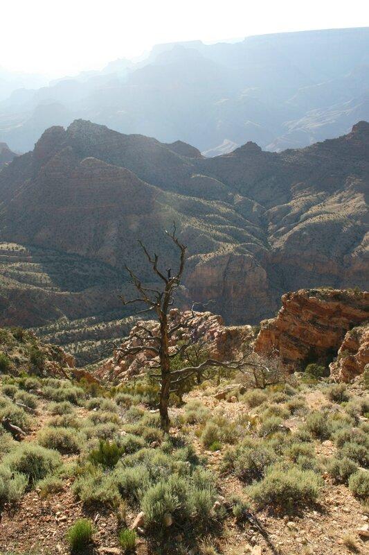 20140605_u_desert_view_grand_canyon_07