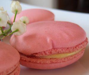 macaron_vanille_fraise10