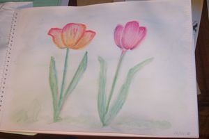 Speed_Watercolor_Tulipes