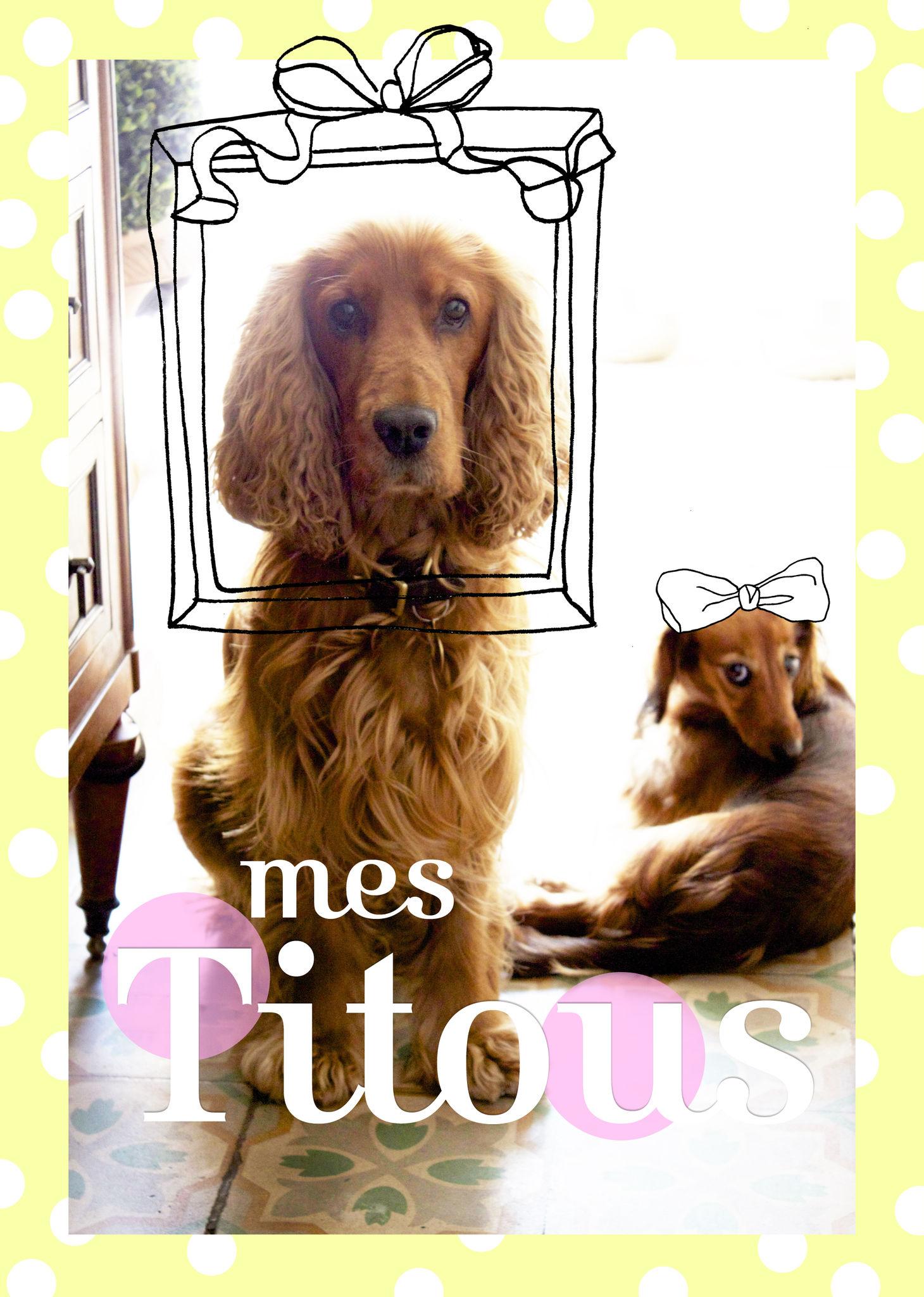 la_porte_aux_chats_titous