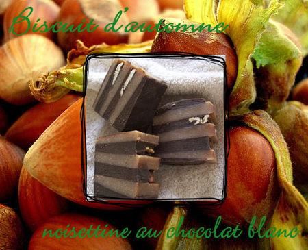 pr_sentation_biscuit_d_automne_modifi__1