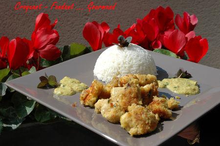 Poulet_des__les_Maldives___mars_2009_208_copie