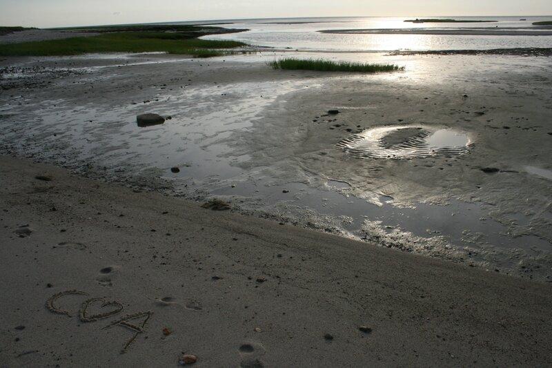 20140701_eastham_cape_cod_boat_meadow_beach_09