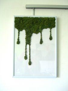 decorations-murales-le-tableau-vegetal-ca-degouline-2139609-cimg9363-ba7e7_570x0