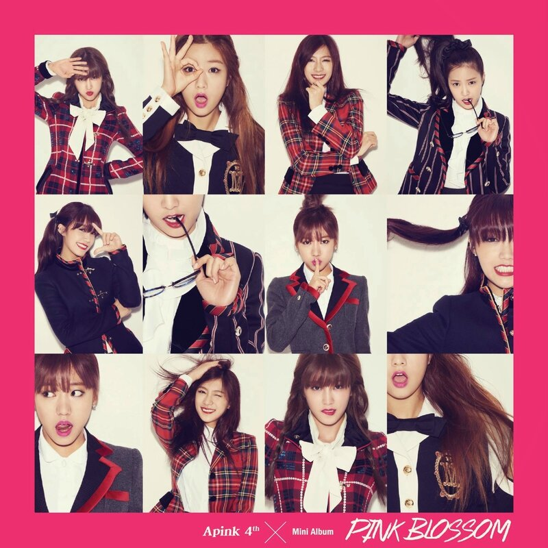 A_Pink_Pink_Blossom_Cover