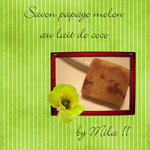 savon_papaye_melon_modifi__1