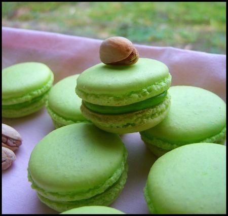 49878428 p Macarons à la pistache : divine tentation