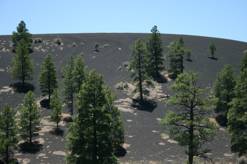 20140605_sunset_crater_volcano_30