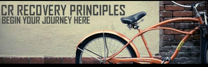 Image result for celebrate recovery principles