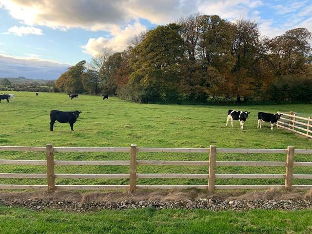Land C.19 Acres, Rathattin, Hollywood, Co. Wicklow