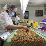 California drought takes toll on world's top almond producer 💥👩👩💥