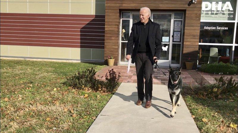 Majorly manipulated photo of Joe Biden's dog circulating online