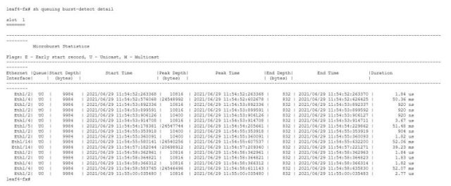 Figure 2: Raw microburst records (NX-OS)