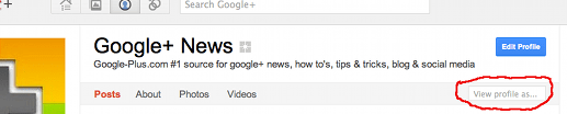 Google+ view profile as others