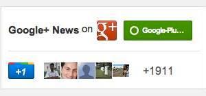 Google+ badge default size
