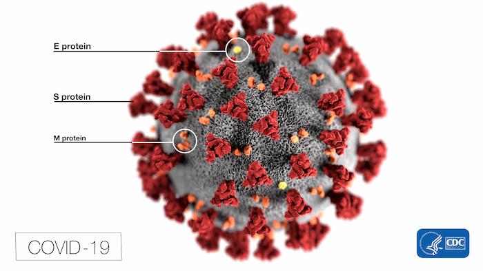 武漢肺炎是人造病毒還是SARS?有特效藥?杜奕瑾AI團隊解答你最擔心的四個問題 - 未來城市@天下