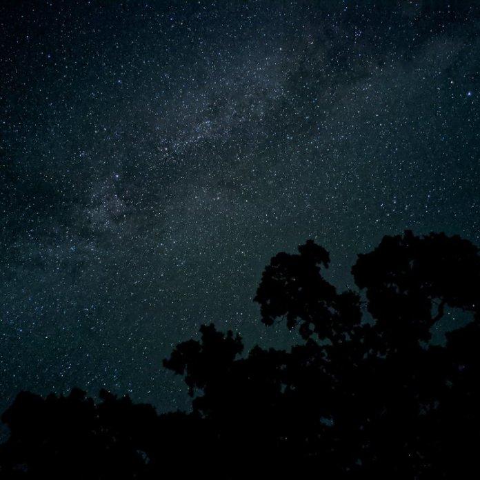 Night Sight photo.jpg