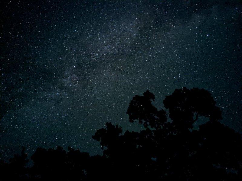 Exemplo de foto tirada como o modo noturno do Pixel 4