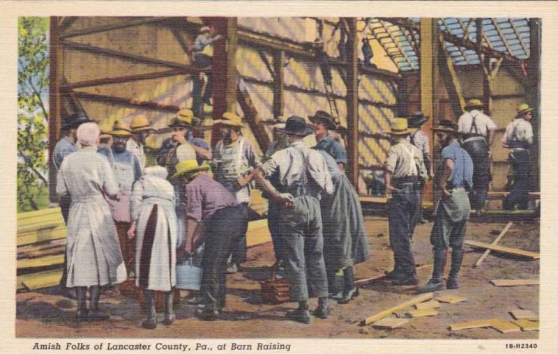 barn raising amish folks