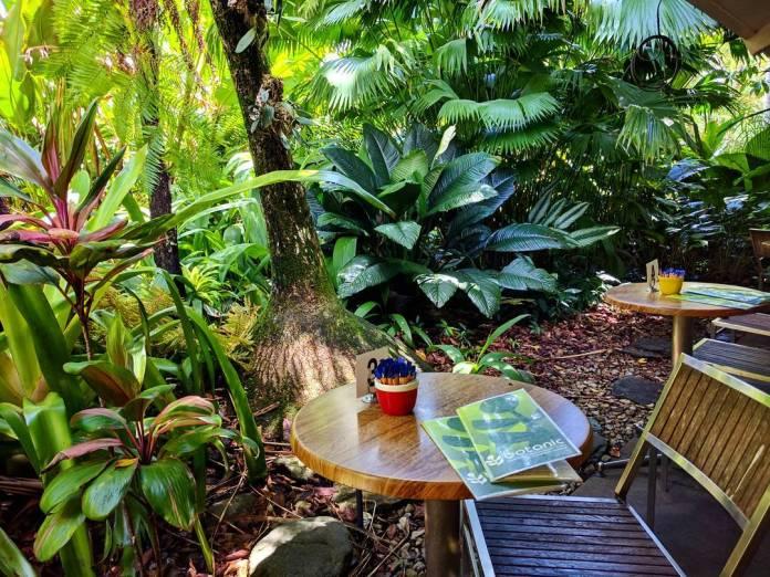 Carins Botanic Gardens Detailed Guide