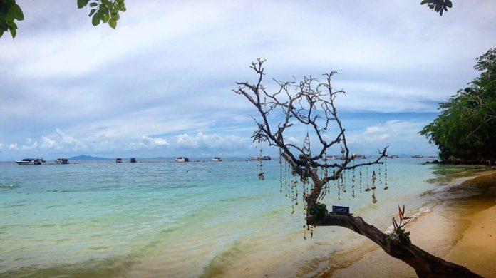 Một góc vịnh Phak Nam