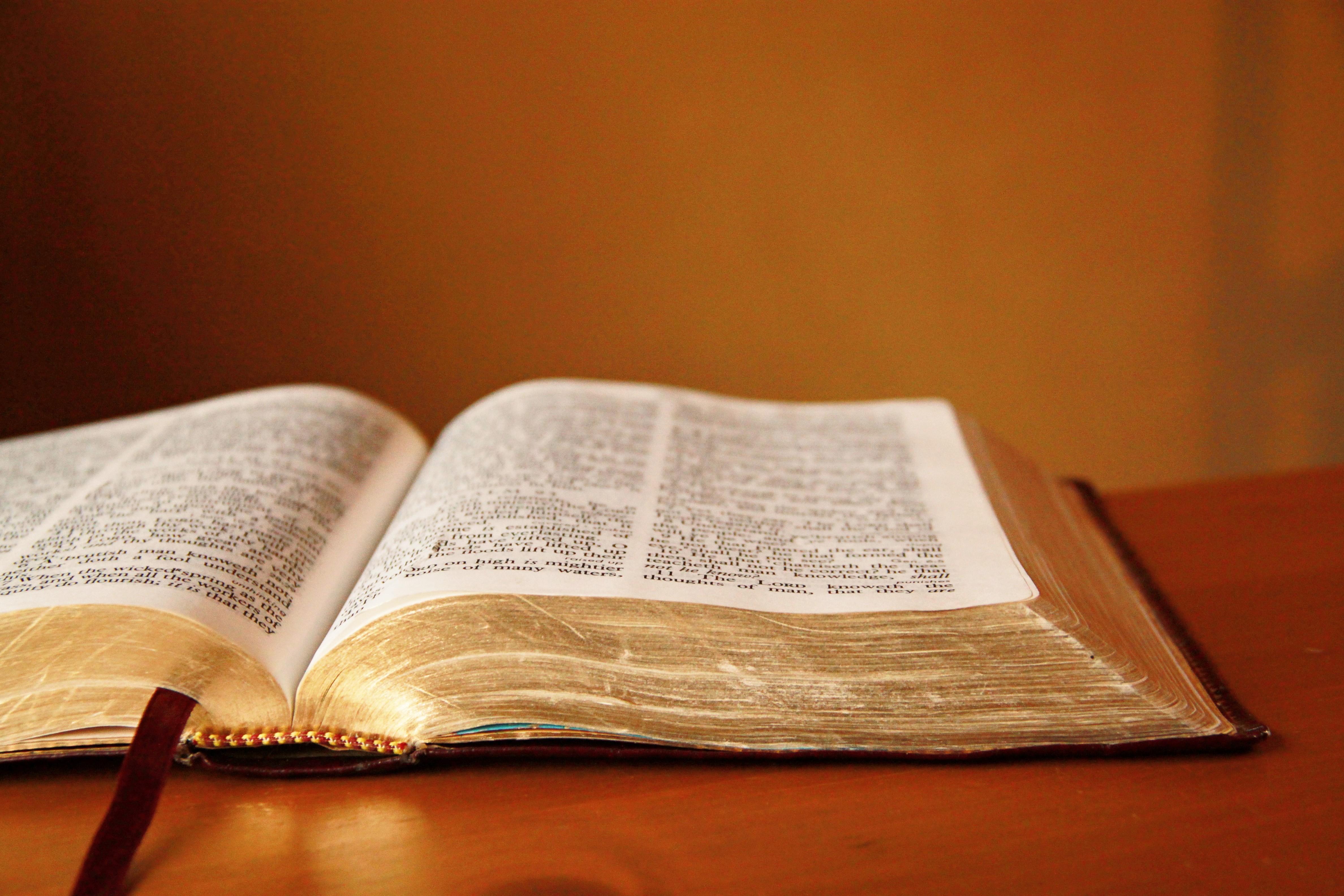bible corpus kaggle