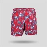 Men's Printed Swim Trunks